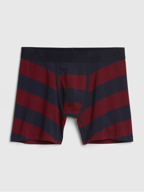 "5"" Stripe Boxer Briefs"